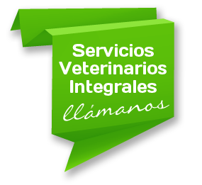Servicios Veterinarios Integrales
